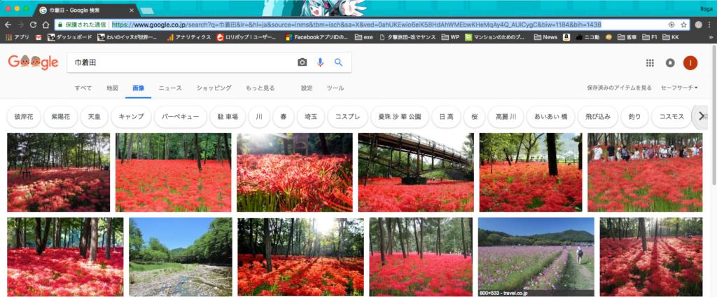 Google画像検索「巾着田」より