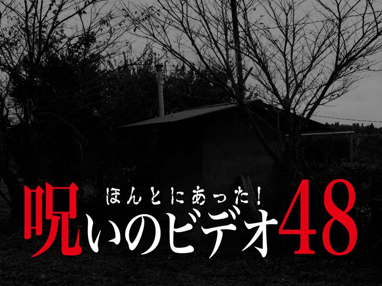 eye_catch_noro_48