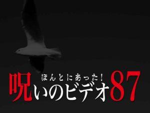 ほんとにあった!呪いのビデオ87(ネタバレあり)