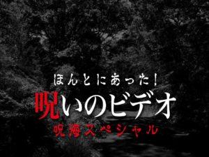 ほんとにあった!呪いのビデオ 呪海スペシャル(ネタバレあり)